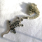Gecko Necklace metall